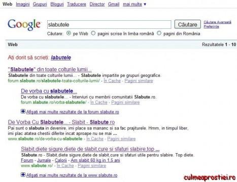Sugestii pe Google