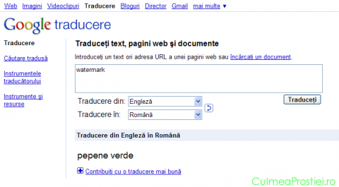 Google translate   watermark